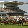 Stay with Signature Living for the Grand National