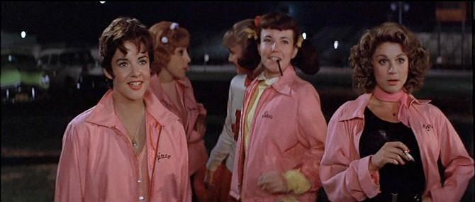 pink ladies fancy dress